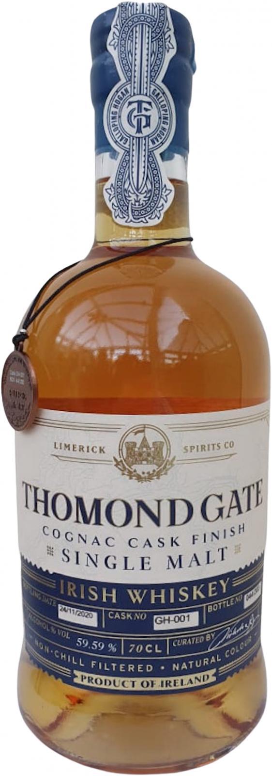 Thomond Gate Galloping Horse Hogan TLS