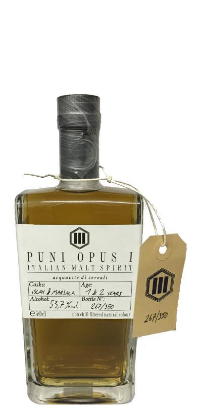 Puni Opus 1
